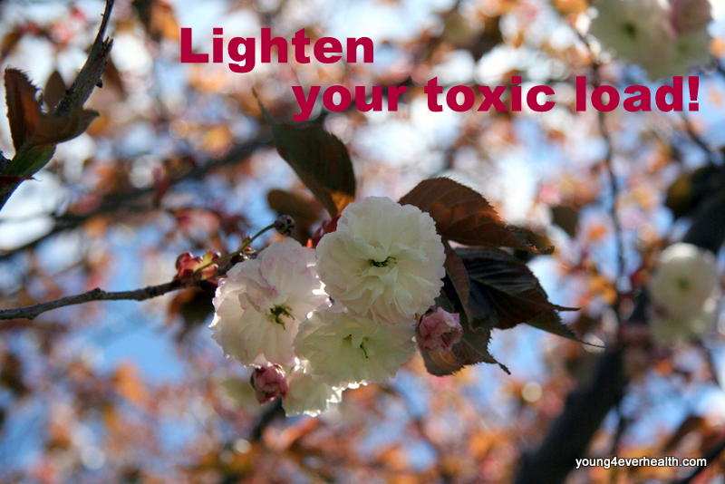 Lighten your toxic load